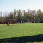 Youth Sports Leagues & Organizations